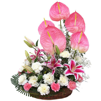 Pink and White Carnations with Pink Anthuriums in Basket