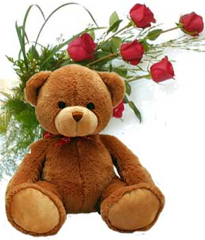 6 Red roses and 12 Inches Teddy