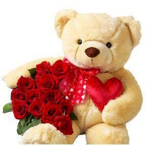 8 Red roses and 8 Inches Teddy