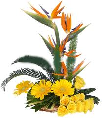 Bird of Paradise +Yellow Gerberas arrangement