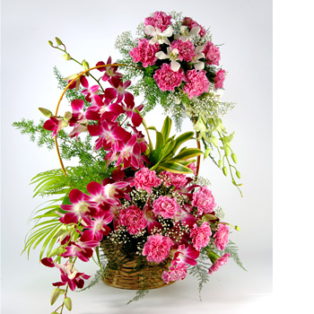 10 Pink carnations 4 Purple orchids in Handle basket with 8 pink carnations hanging on the handle