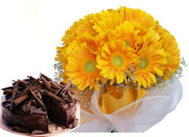 12 Yellow Gerberas Bunch+�1/2�Kg chocolate Cake