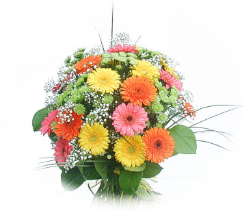 24 Mix Coloured Gerberas Basket