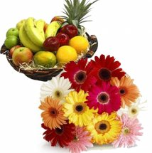 2 Kg fresh fruits + 12 Gerberas bouquet