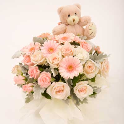 12 pink gerberas with pink teddy in basket