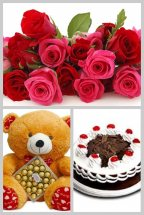 12 pink roses Half Kg Black forest cake Teddy 12 inches with 16 Ferrero chocolates