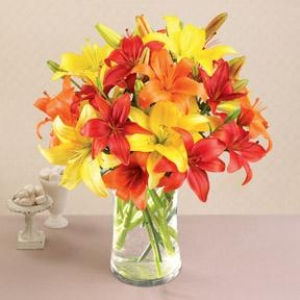Mix lilies in a vase