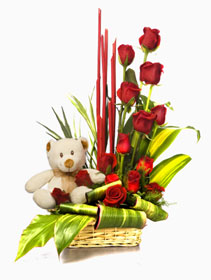 12 Red Roses + teddy in same basket