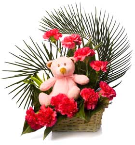 Pink Teddy 8 Carnations in Same Basket