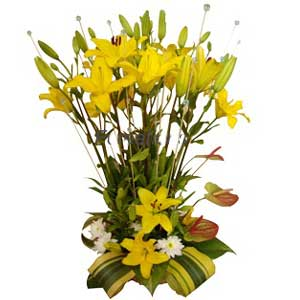 Yellow Lilies in a basket